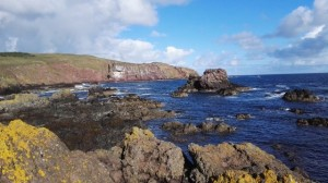 beautiful-day-at-st-abbs